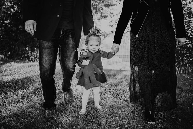 Abbott Family Mini