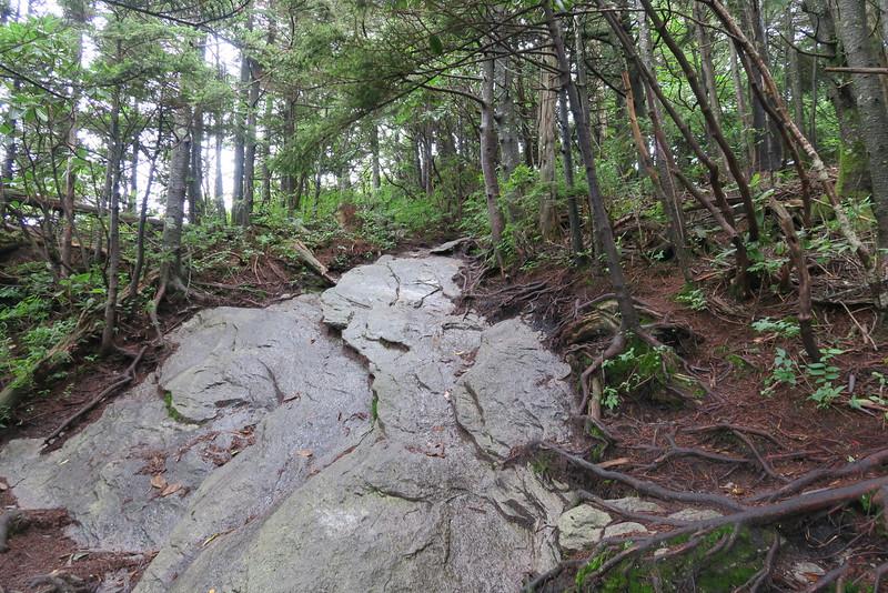 Grandfather Trail -- 5,820'