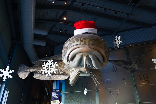 2009 Christmas - Great Lakes Aquarium