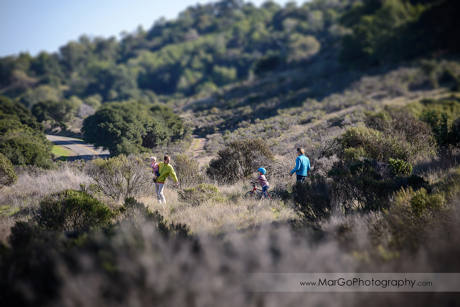 family of four walking on the hills at San Raeael China Camp SP