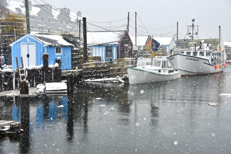 Widgery wharf snow 12:30:19.jpg