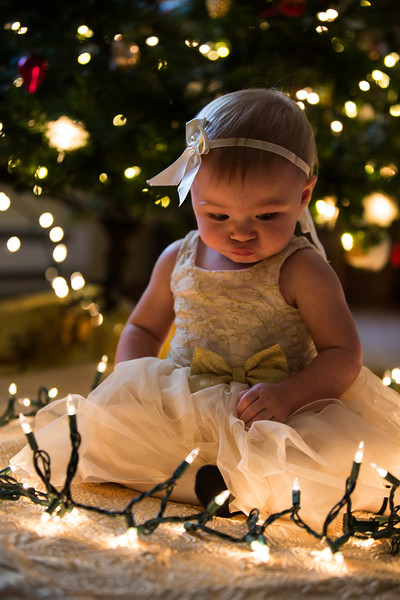 Leah Marie's First Christms 2018 (3).jpg