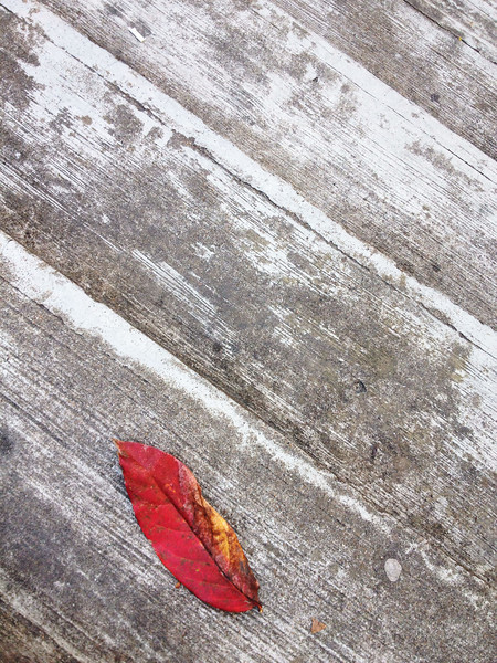 Fall in the stairs