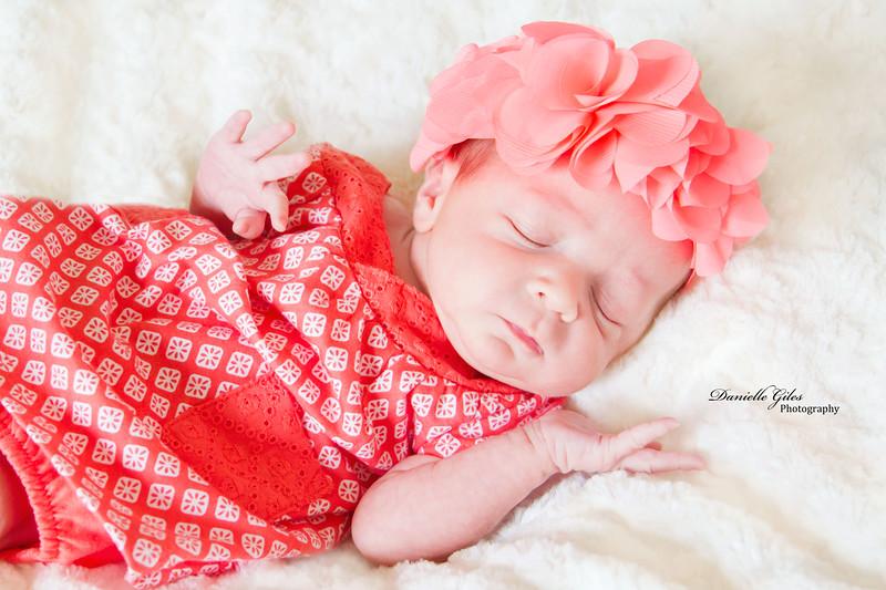 _4_website_newborns-59.jpg