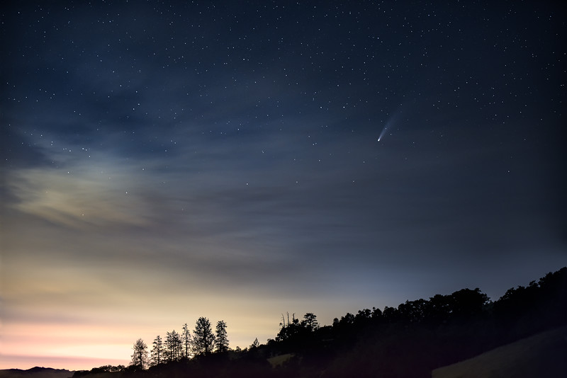 henry-coe-state-park-comet-and-trees-Edit.jpg