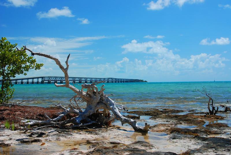 Mac Island  bridge.jpg
