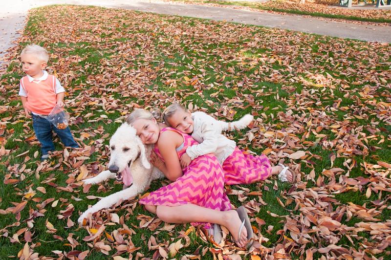 DogDays_Dogs_Gardens_2015_PIC_5979.jpg