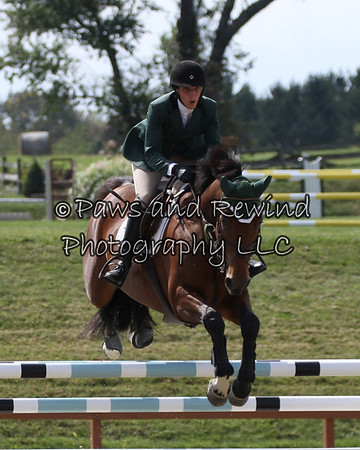 Grand Prix Ring: Open Jumper (Saturday)