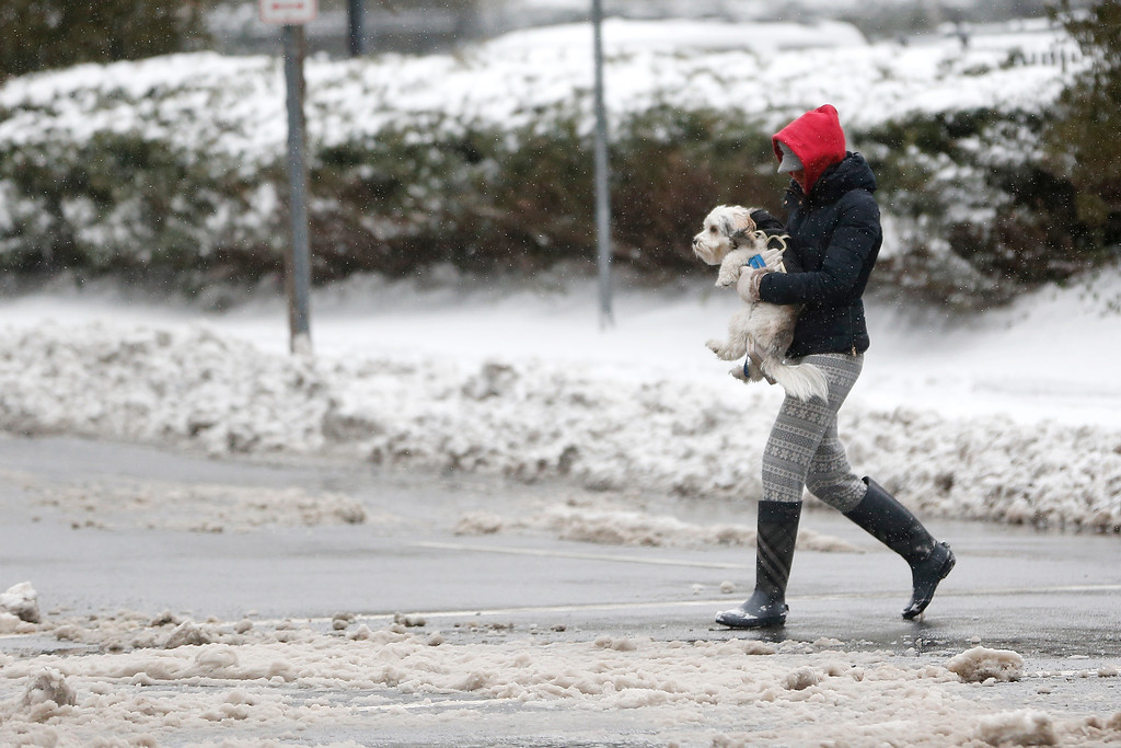 . A woman carries her dog across a snow covered intersection following an overnight snowstorm, Tuesday, Jan. 27, 2015, in Jersey City, N.J.  A storm packing blizzard conditions spun up the East Coast early Tuesday, pounding coastal eastern Long Island into Maine with high winds and heavy snow.(AP Photo/Julio Cortez)