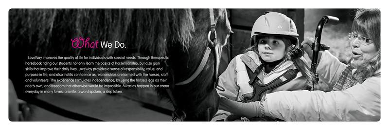 LWI 0051 Brochure3.jpg