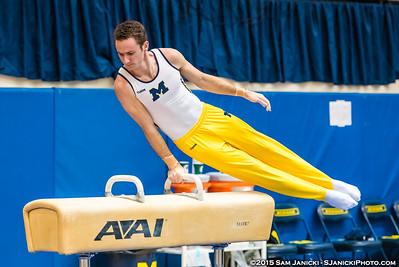 1st Rotation - Michigan Men's Gymnastics Intrasquad - 12-13-15