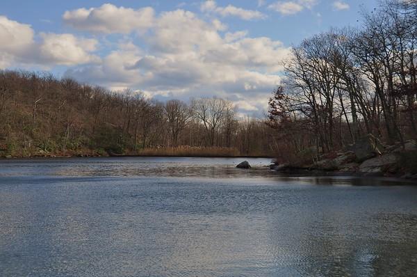 Silas Condict County Park