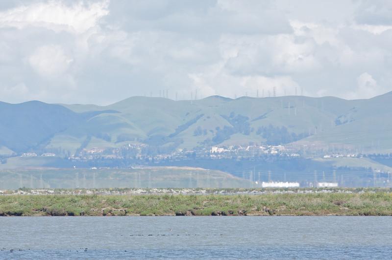 Shoreline_3.jpg