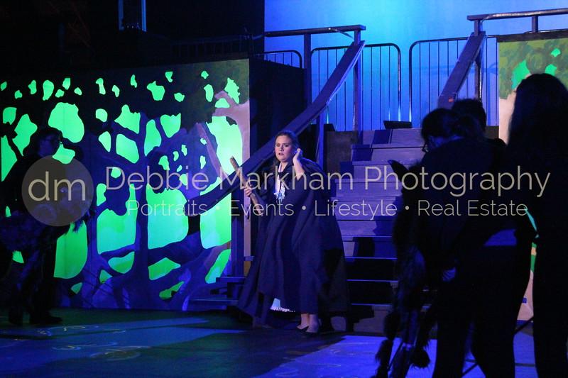 DebbieMarkhamPhoto-Opening Night Beauty and the Beast407_.JPG