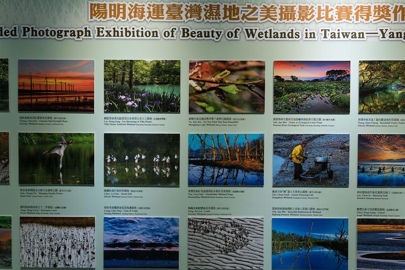 Taipei033.jpg