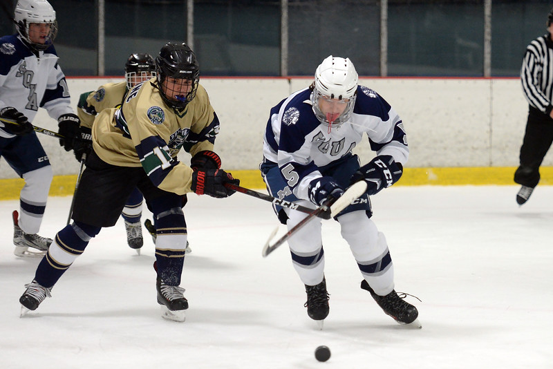 #5, Hunter Alia of the Manasquan High School Varsity Ice Hockey Team goes to control the puck in the game against Freehold High School at the Jersey Shore Arena on 01/16/2019.(STEVE WEXLER/THE COAST STAR).