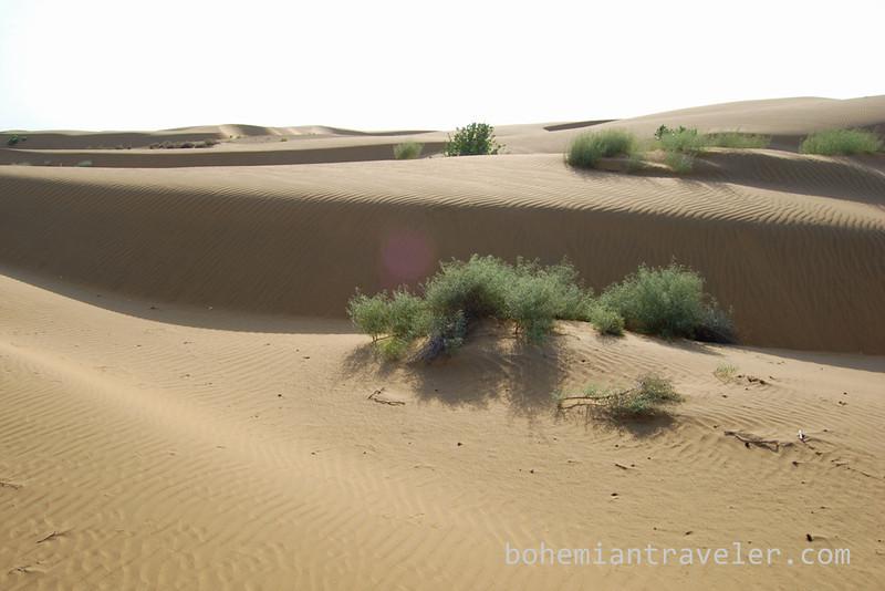 desert sand dunes.jpg