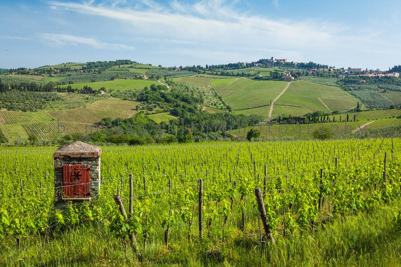 Wine Country , Panzano in Chianti , Tuscany