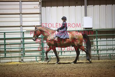 Class 7 Saddle Horse Pleasure - 17 & Under