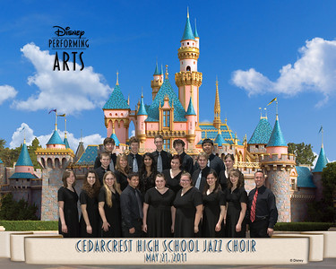 DISNEYLAND MUSIC SPRING TOUR