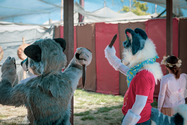 Renaissance Pleasure Faire - 04-27-2019