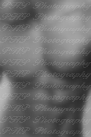 PHP Photography Boudoir
