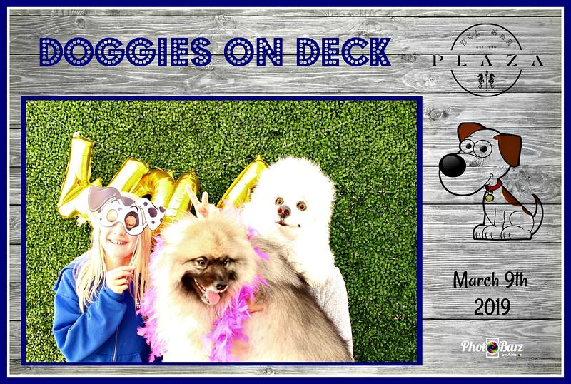 Doggys on Deck56.jpg