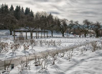 Landscape 2014