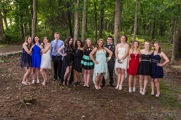 WMS 8th Grade Dance 2016 (not really a prom)