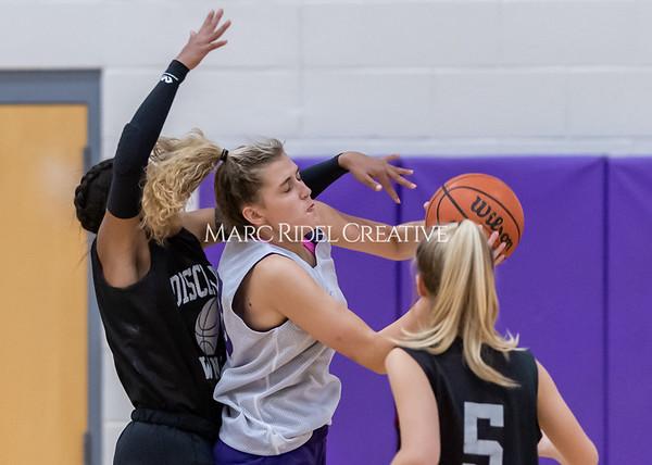 Broughton girls basketball vs Wake Forest. November 14, 2019. D4S_0093