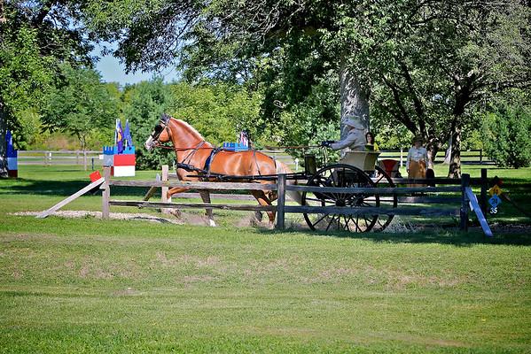 2014 VILLA LOUIS-SINGLE HORSE OPEN