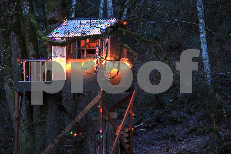 Here is the tree house I built in 2010 for my grandchildren all decked out for the holidays. Christmas lights,