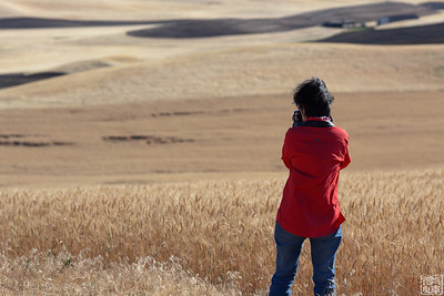 2011.8.18/23.Palouse Portaits