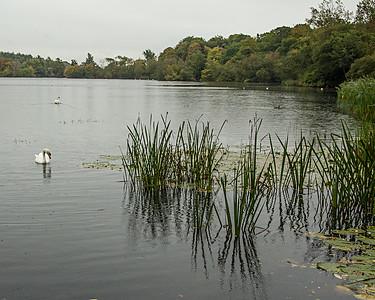 Bolam Lake 2nd October 2021