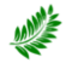 fern-leaf-favicon.png