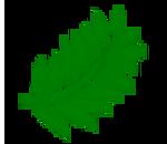 fern-leaf-favicon.png