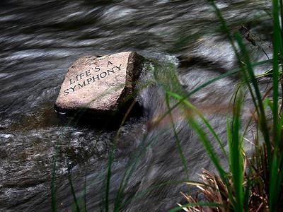20150930 - Life Symphony (MA)