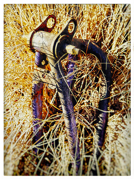 Bikelope-AF2A4931.jpg