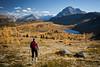 """Autumn at Healy Pass"" VIII, Banff National Park, Alberta, Canada."