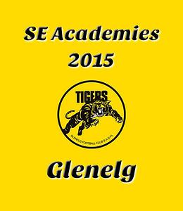 SE Academies 2015