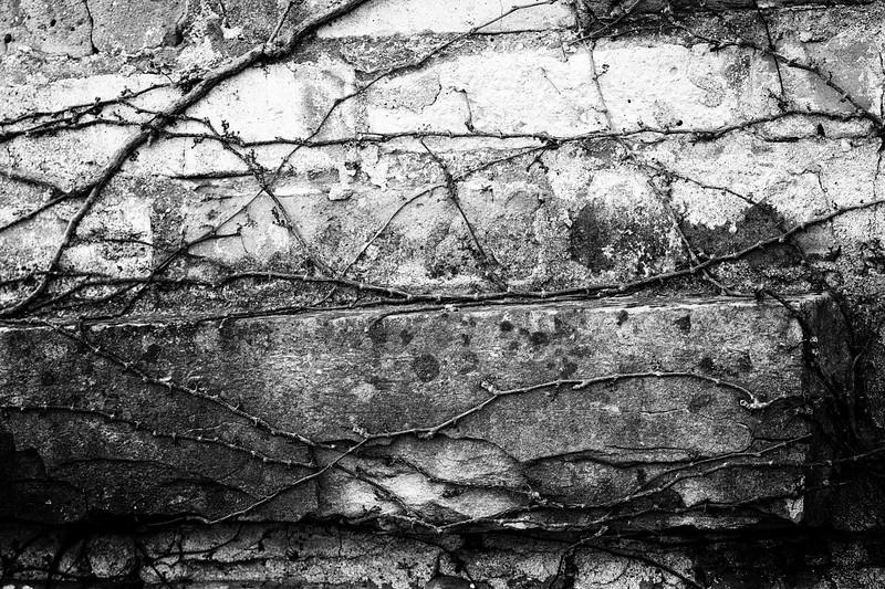 Carl Simmerman-100068-Edit.jpg