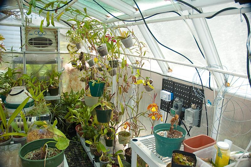 532998377-greenhouse-R-2-18-11.jpg