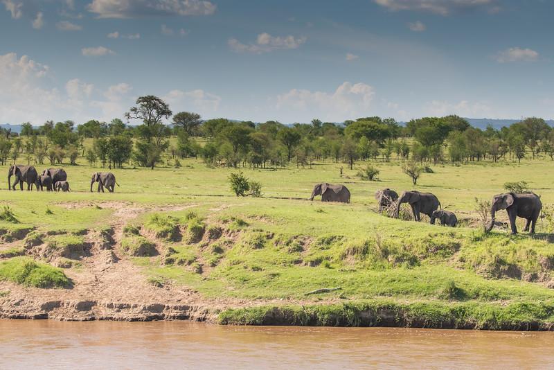 Africa - 101216 - 1833.jpg