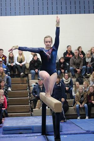 DC gymnastics v. Delano, 1-6-17