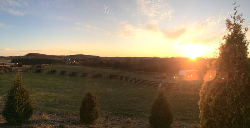 Sunset over the pasture.