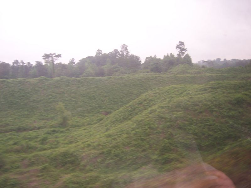 Shot from the train ride home.