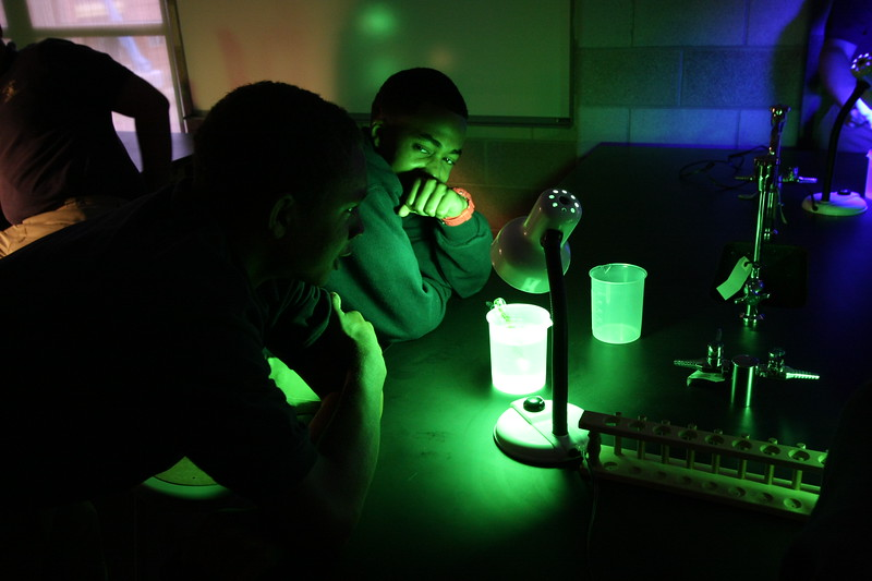 \\hcadmin\d$\Faculty\Home\dlindsey\David\Pictures\Holy Cross\09-10\Biology\Photosynthesis\IMG_8556.JPG