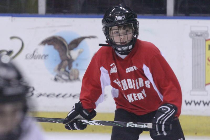 2009 2010 Youth Hockey
