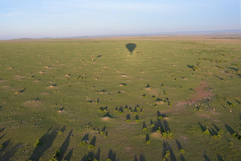 East Africa Safari 201.jpg