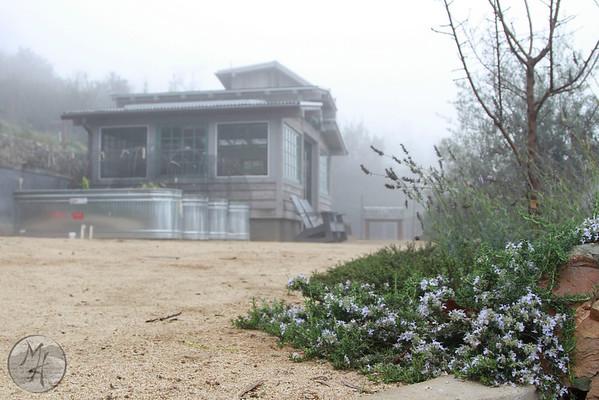 Bluebird Canyon Farm -Winter 2015